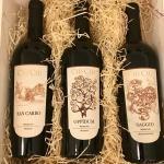 San Carro - Oppidum - Saggio - Vini per tutti Geschenkideen